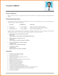 Sample Resume Of It Professional by Alluring Objective For Resume It Professional About Resume Samples