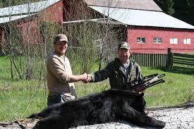 instant crossbow kill on black bear backyard deer hunting