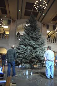 30 foot tree brings color to memorial union features