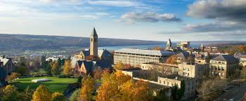 cornell to establish an integrated college of business