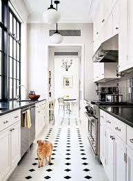 white galley kitchen ideas small white galley kitchen home design ideas