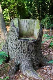 Stump Chair To Decorate The Garden With Tree Stumps In An Amazing Way