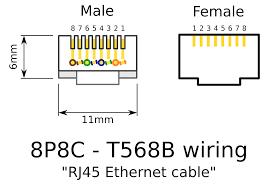 cat 5 wiring diagram b floralfrocks