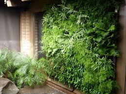 Indoor Vertical Gardening - indoor vertical garden system home outdoor decoration