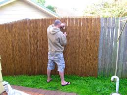 interior alluring bamboo fencing ideas for your backyard advice