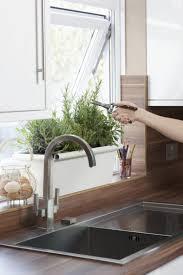 plante de cuisine plantes de cuisine conseils pratiques et astuces pour vous