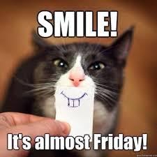 Friday Cat Meme - smile it s almost friday pictures photos and images for facebook