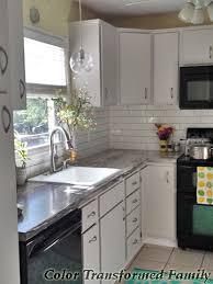 Delta Savile Kitchen Faucet Delta Savile Stainless Faucet Color Transformed Family