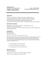 sle seo resume resume extracurricular activities sle 28 images resume sle