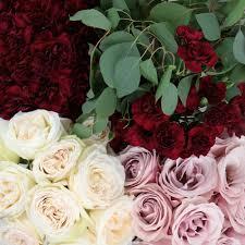 burgundy flowers blush diy wedding flower pack