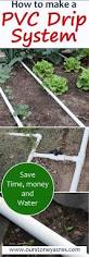 Basic Backyard Landscaping Ideas by 295 Best Backyard Images On Pinterest Gardening Balcony And