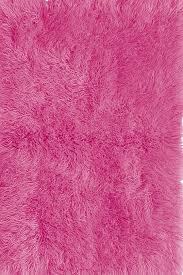 Area Rugs For Girls Room 46 Best Area Rugs Images On Pinterest Area Rugs Faux Fur And