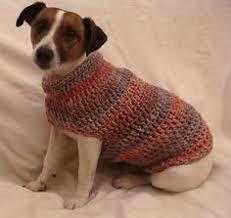 free crochet dog sweater crochet and knit