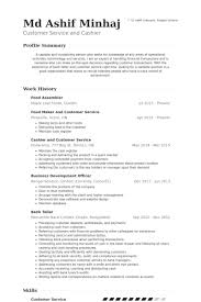 assembler resume samples visualcv resume samples database