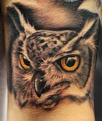 225 best owl tattoo images on pinterest dreams feather and projects