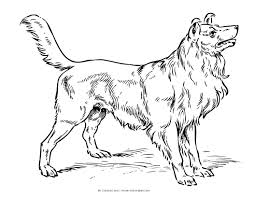 dog coloring pages the sun flower pages