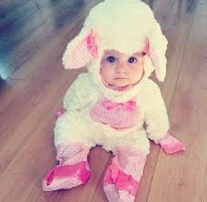 Baby Halloween Costumes 25 Baby Lamb Costume Ideas Baby Bear Suit