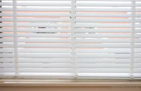 types of window shades what are roller shades with picture