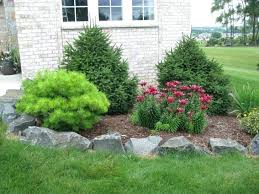 small landscaping trees garden and patio for small front yard small