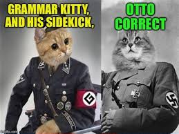 Grammer Nazi Meme - th id oip hmtzvtvm4wuir4pet7nwdghafj