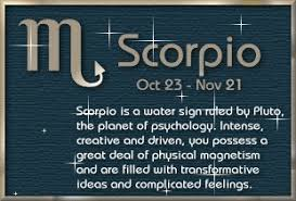 scorpio sign meaning meaning the sign sign scorpion eliment