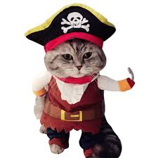 halloween for dogs costumes popular dog costume pirate buy cheap dog costume pirate lots from