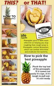 best 25 pampered chef party ideas on pinterest pampered chef pampered chef pineapple wedger kitchen tools easy this or that
