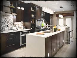 kitchen design ideas pictures lovely kitchen design ideas maisonmiel the popular simple