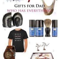 20 best christmas gift ideas for dad 2017 vivid u0027s