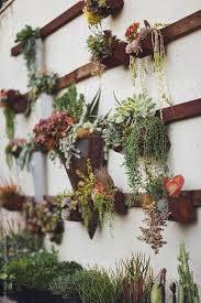 Hanging Wall Planters Best 25 Succulent Wall Gardens Ideas On Pinterest Succulent