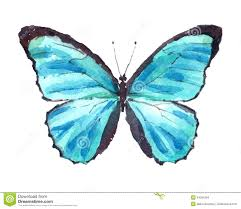 watercolor butterfly clipart clipartxtras