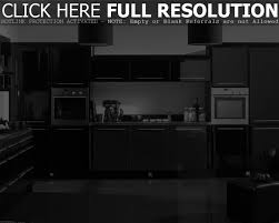 pictures of kitchens modern black kitchen cabinets dekes branford