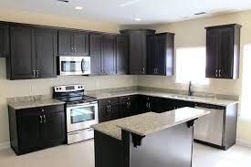 L Kitchen Designs Kitchen Room L Shaped Designs With Breakfast Bar Swingcitydance