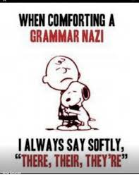 Meme Grammar - when comforting a grammar nazi i always say softly there their they