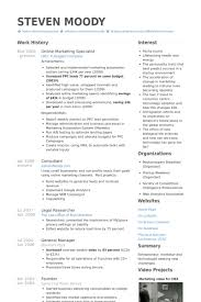 Digital Media Resume Examples by Online Marketing Specialist Resume Samples Visualcv Resume
