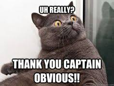 Captain Obvious Meme - funny obvious memes image memes at relatably com