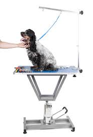 dog hair cutting table dog grooming table stock photo image of black pedigree 33208188