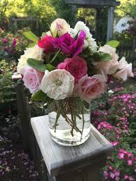 Preservatives For Cut Flowers U2013 Tips For Feeding Fresh Cut Flowers