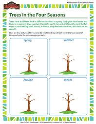 trees in the four seasons u2013 science for kindergarteners u2013