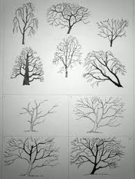 pin by margi bartling on trees and leaves pinterest doodles