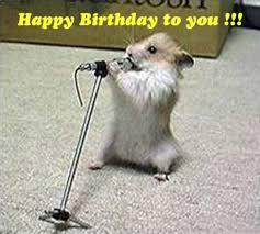 Funny Animal Birthday Memes - funny animal happy birthday images funny animal birthday memes