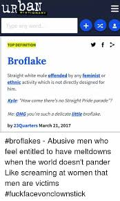 Meme Dictionary Definition - urban dictionary type any word top definition broflake straight