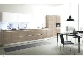 Kitchen Cabinets Chicago by Modern Kitchen Cabinets Modernkitchen3contemporary Design Ideas