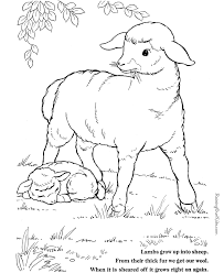 sheep coloring pages farm animals to print and color 008
