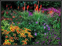 44 best flower gardens images on pinterest flower gardening