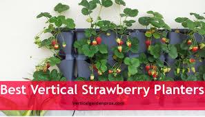 best planters best vertical strawberry planters vertical garden kit