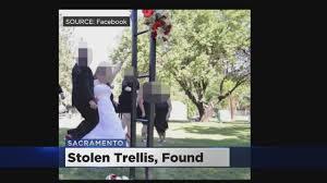 stolen mckinley park rose trellis found in natomas wedding photos