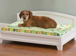 Elevated Dog Bed With Stairs Dog Bed Stairs Ideas Dog Bed Stairs For Your Convenience And
