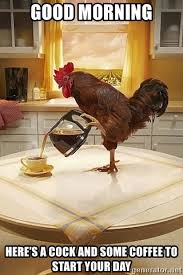 Rooster Meme - good morning here s a cock and some coffee to start your day