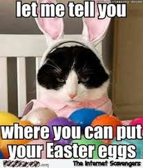 20 happy easter egg hunting memes sayingimages com